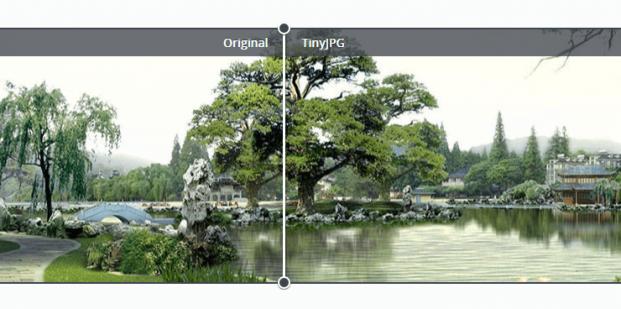 TinyJPG optimalizácia obrázkov